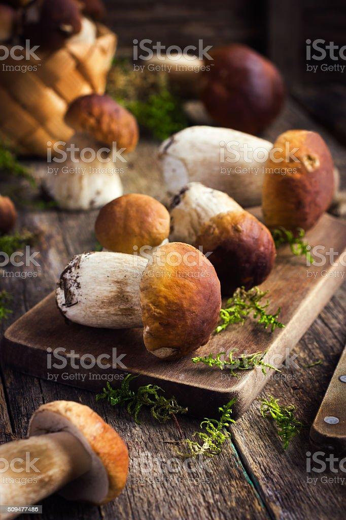 Rústica boletus hongos en fondo - foto de stock