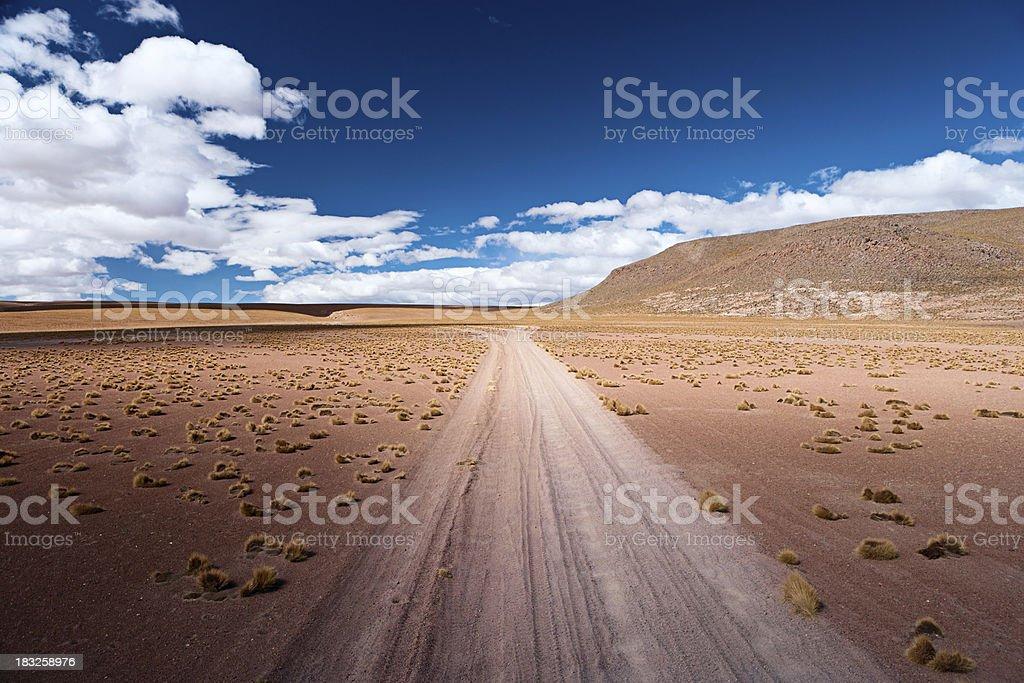 Bolivian altiplano royalty-free stock photo