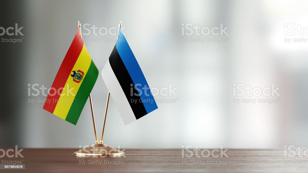 Bolivian And Estonian Flag Pair On A Desk Over Defocused Background stock photo
