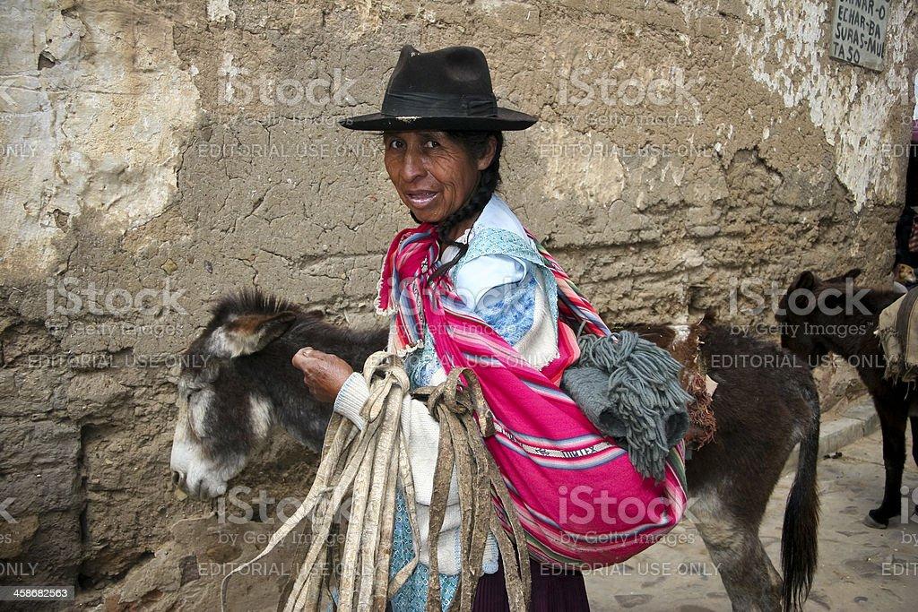 Boliviano mulher com os burros - foto de acervo