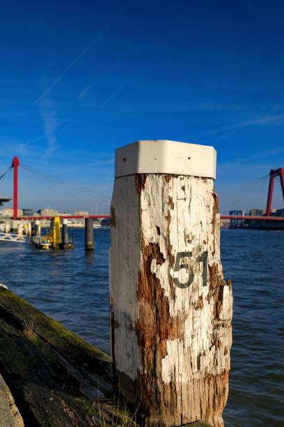 bolardo con willemsbrug característico de rotterdam en el fondo - numero 51 fotografías e imágenes de stock
