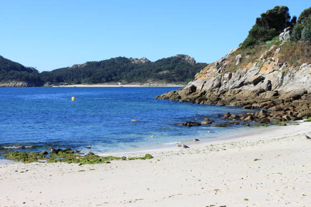 Bolos beach in Cies islands Bolos beach in Cies islands. Galicia, Spain bolos stock pictures, royalty-free photos & images