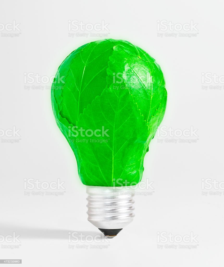 Bombilla ecologica con energia verde. stock photo