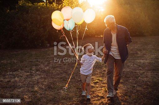 istock Bonding with grandpa 955573106