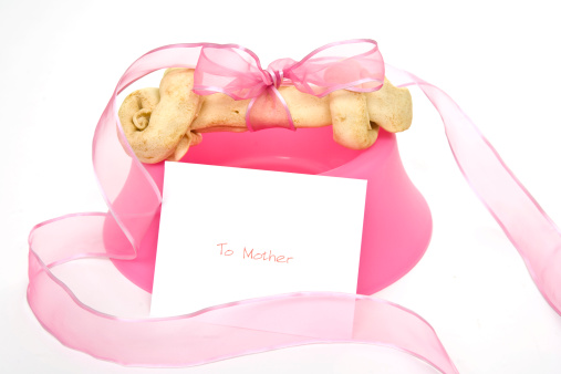 A dog bone for a Mother's Day gift.