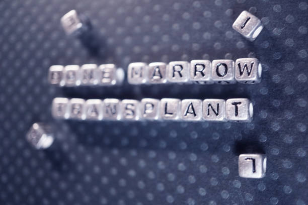 bone marrow transplant shot of silver block letters stem cell therapy stock pictures, royalty-free photos & images