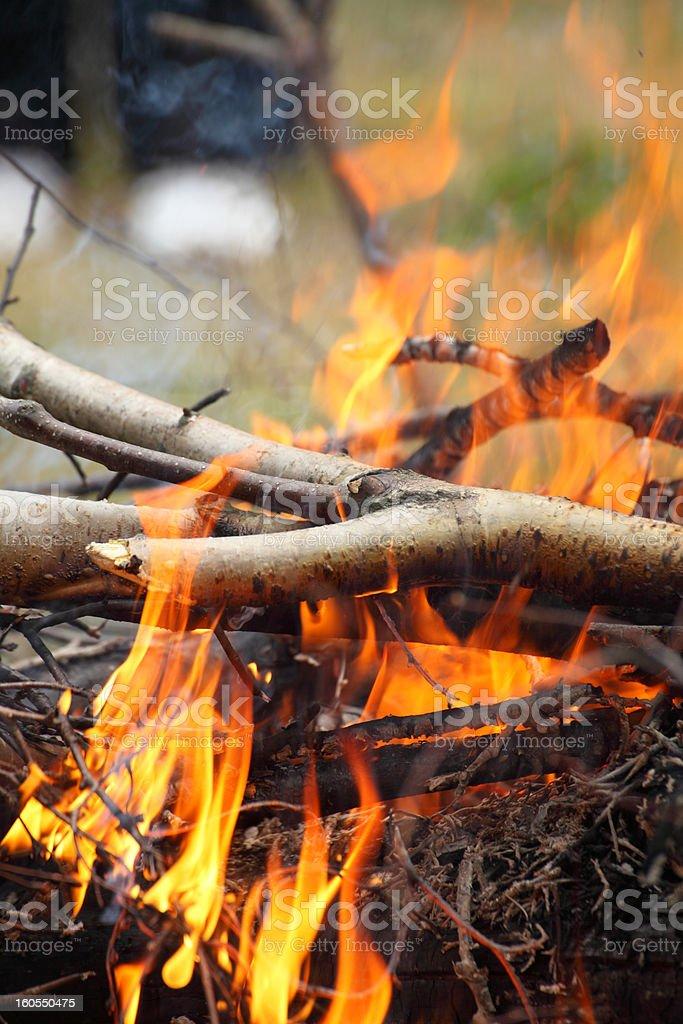 Bonfire campfire fire Flames BBQ royalty-free stock photo