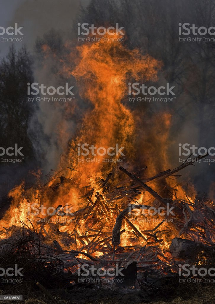 Bonfire in the night royalty-free stock photo
