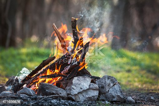 istock Bonfire in the spring forest. coals of fire 471656676
