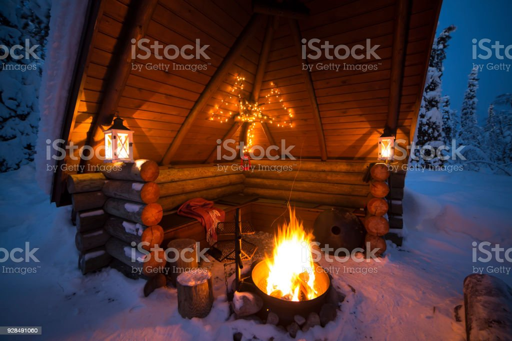 Bonfire In The Winter Forest stock photo