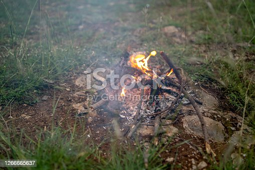 Wooden camp fire