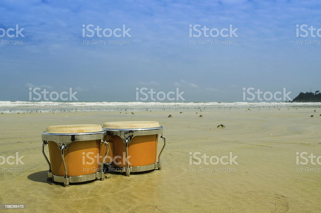 bongo on the beach stock photo