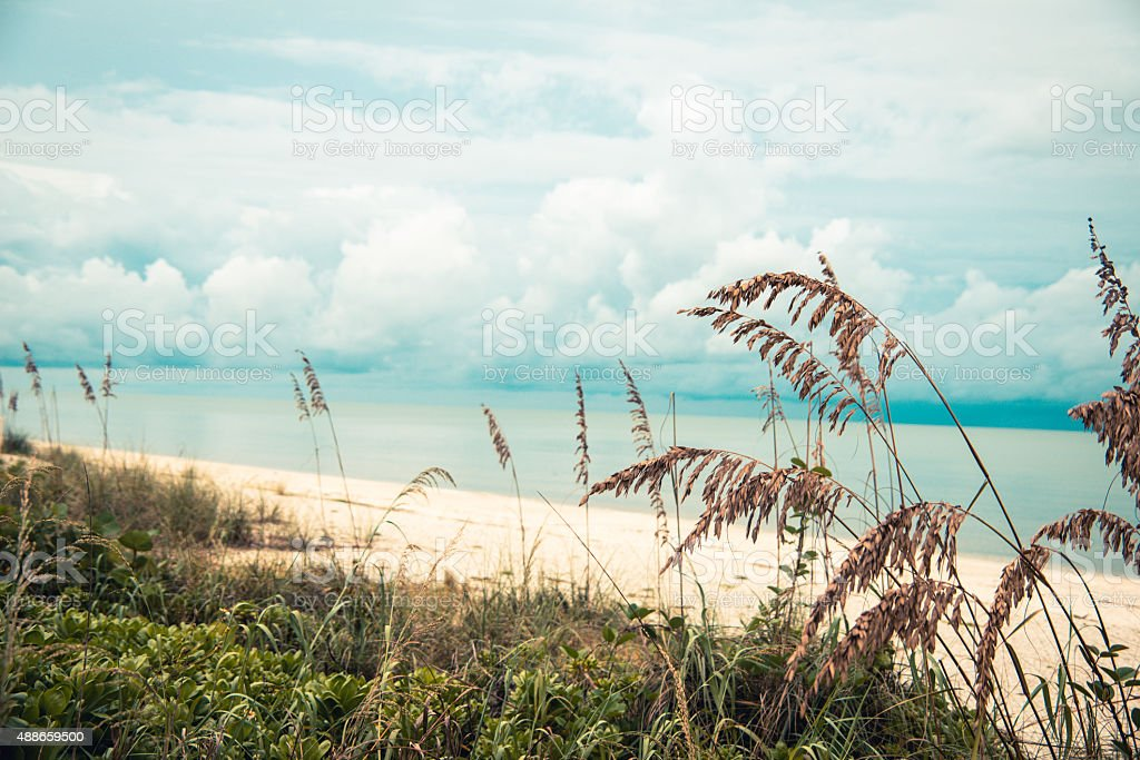Bonita Springs Beach stock photo