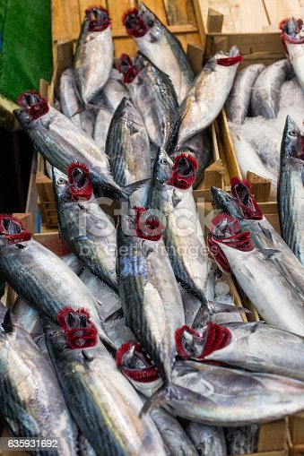 635931692 istock photo bonito fish selling 635931692