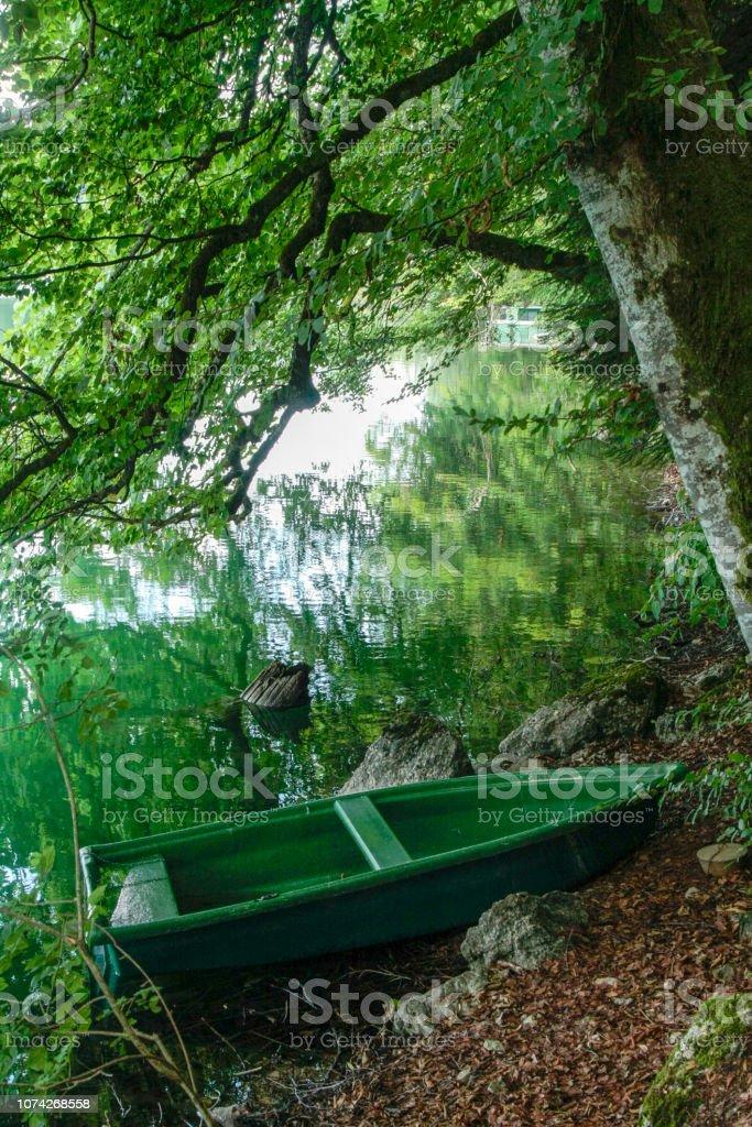 Bonlieu Sjo I Jura Bergen I Frankrike Foton Och Fler Bilder Pa Alsace Istock