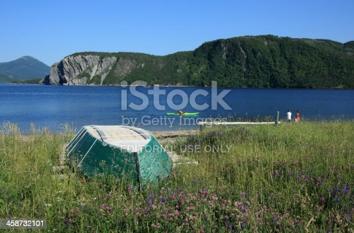 458694311 istock photo Bonne Bay and Norris Point 458732101