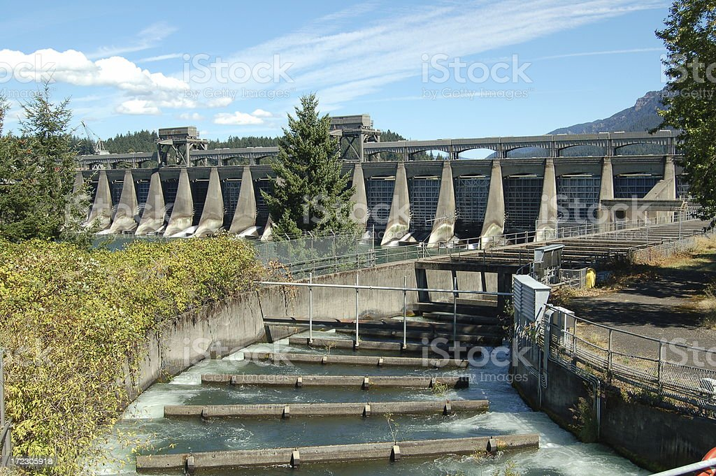 Bonneville Fish Ladder and Spillway stock photo