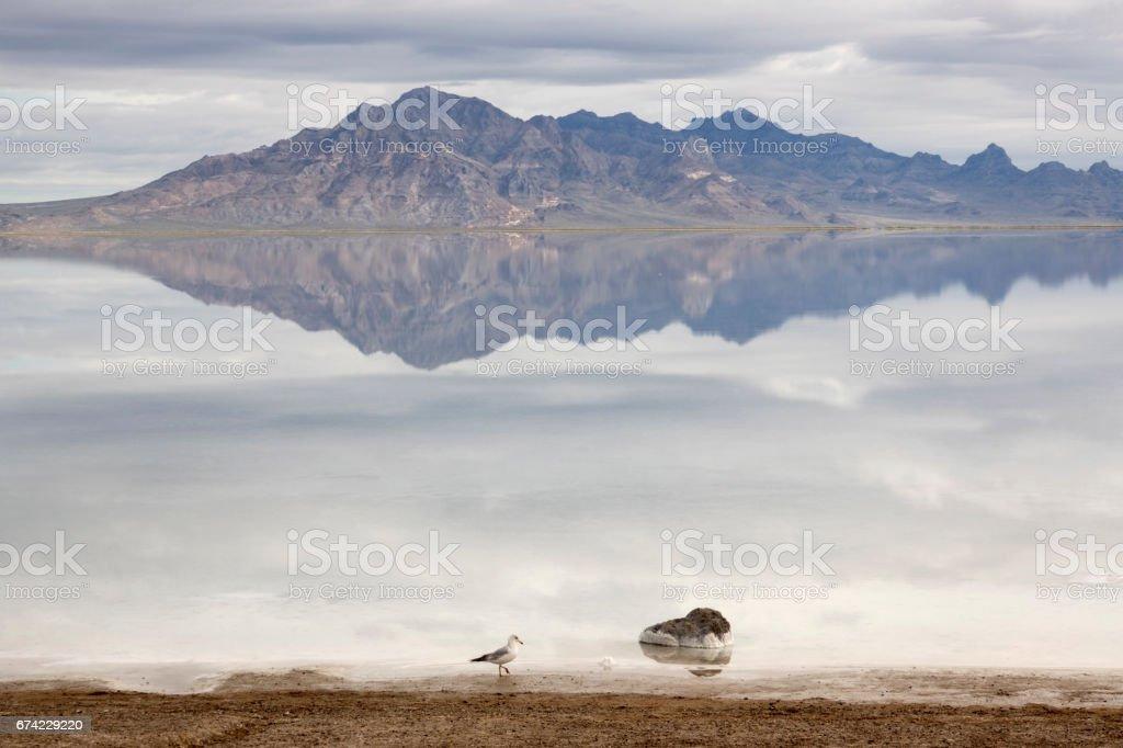 Bonneville Salt Flats Silver Insel Bergen Der Wuste Reflexionen Utah