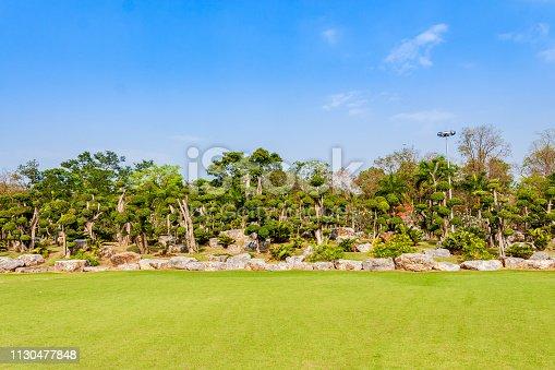 Bonsai garden, grassy sky
