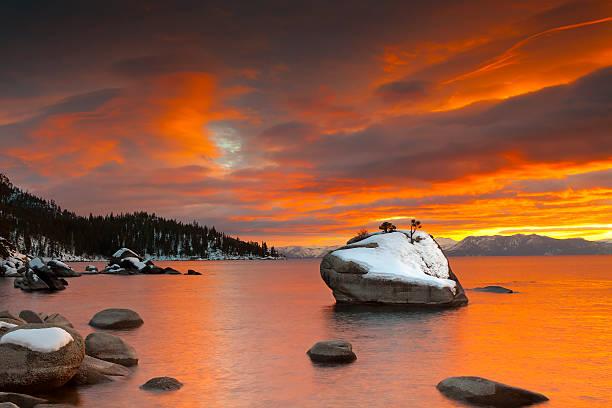 bonsai rock lake tahoe golden – sonnenuntergang im winter - lake tahoe winter stock-fotos und bilder