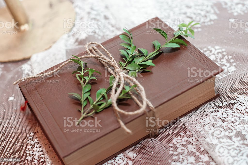 book adorned with green leaves on the table foto stock royalty-free