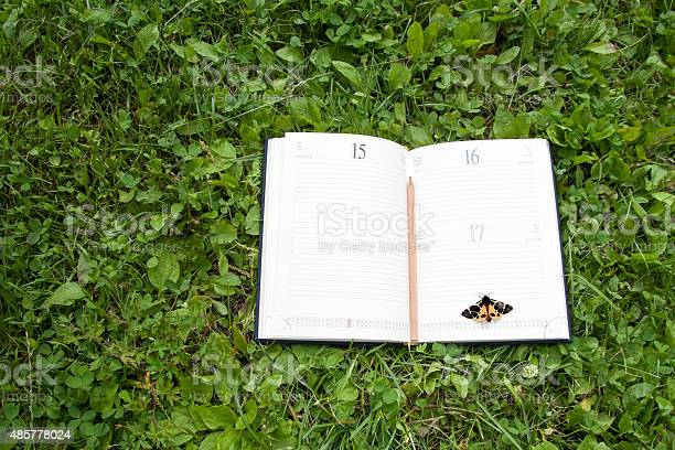Book and butterfly lying on a green forest picture id485778024?b=1&k=6&m=485778024&s=612x612&h=rpcgrg4qyeakslrokcxpfvnrb9zzzwoyvq3gh  yj0q=