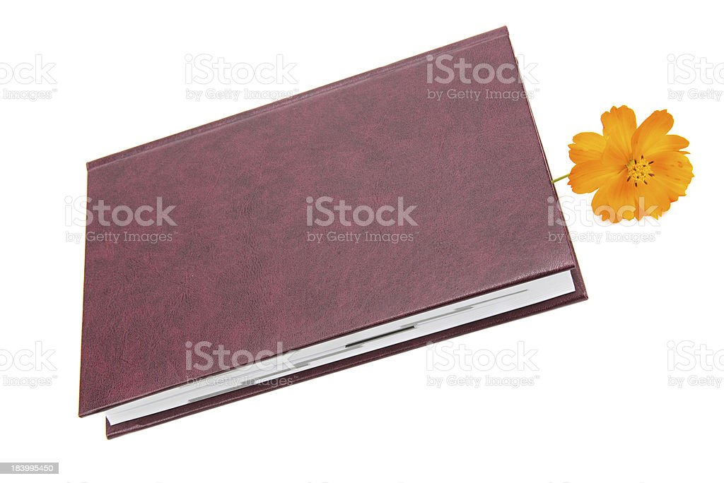 Book and flower stock photo