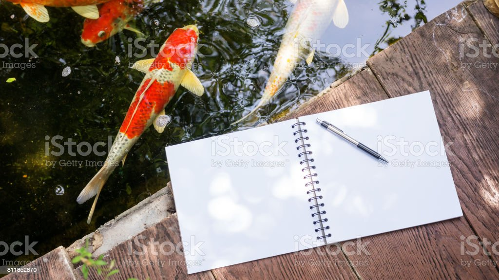 book, and pen place near a fancy carp pond. stock photo