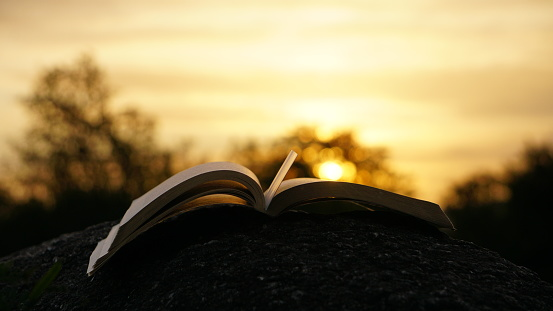 1166716628 istock photo book and the sunset 1221575308