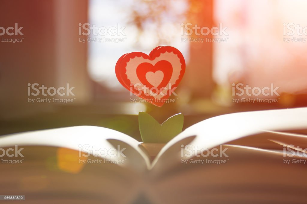 Book And The Symbol Of Love Is The Heart In The Backlight From The