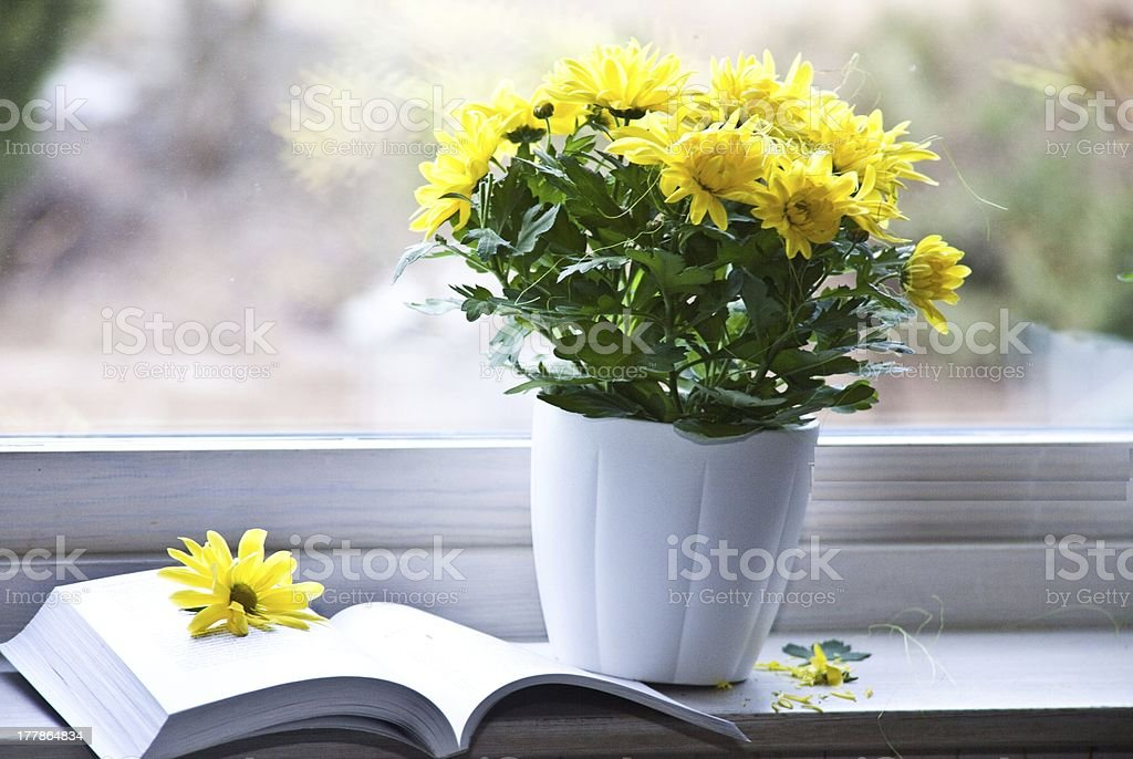 Book and white vase with Yellow flowers stock photo