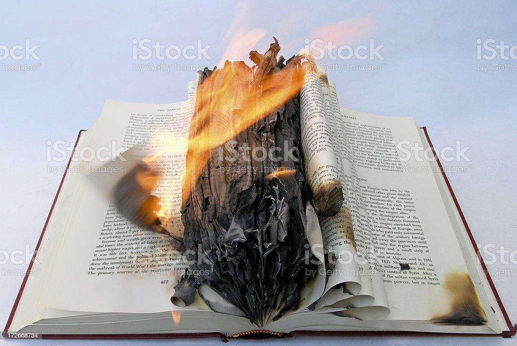 Book Burning royalty-free stock photo