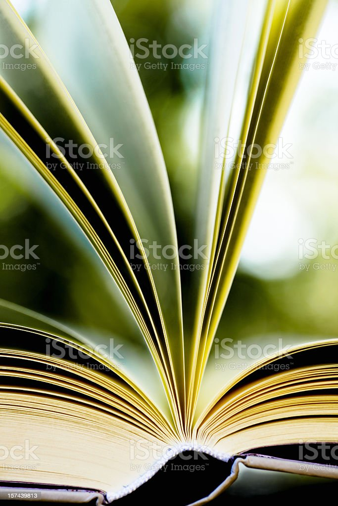 Book close up, outdoors royalty-free stock photo