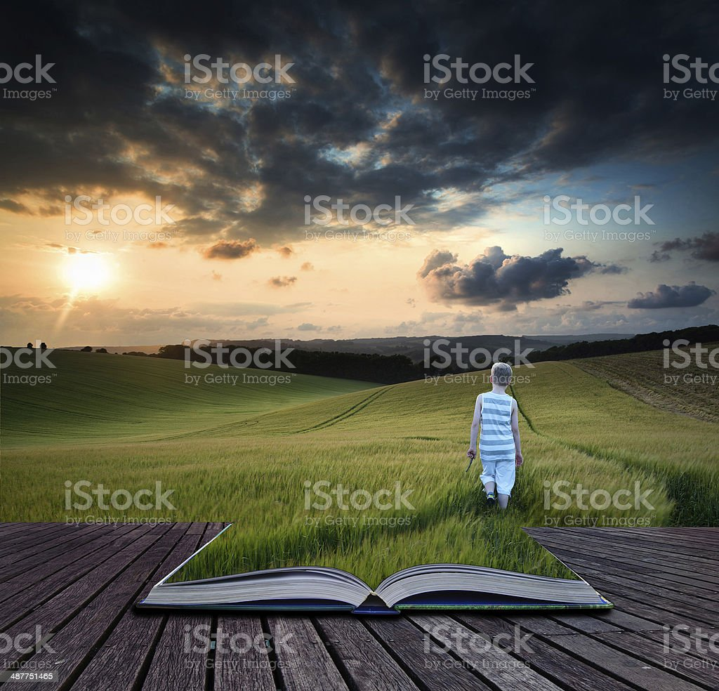 Book concept Concept landscape young boy walking through field a stock photo