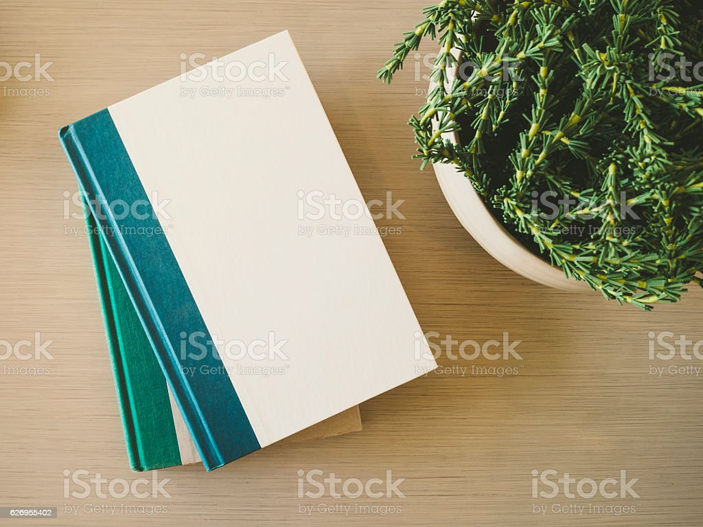 Book cover Mock up on table with plant decoration стоковое фото