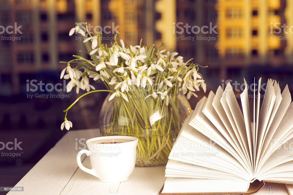 Libro di fronte al finestra nel mattino foto stock royalty-free