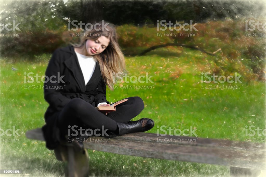 Book of dreams reading on an outdoor wooden bench stock photo