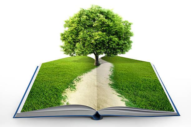 Buch der Natur, isoliert auf weiss – Foto