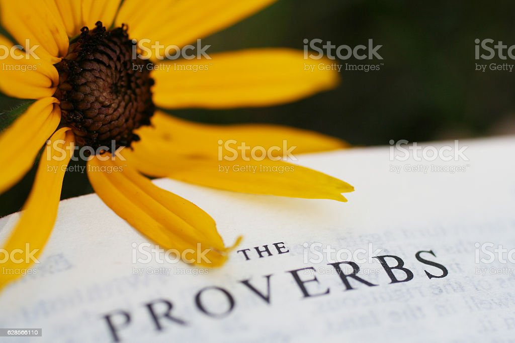 Book of Proverbs in Holy Bible with Yellow Flower stock photo