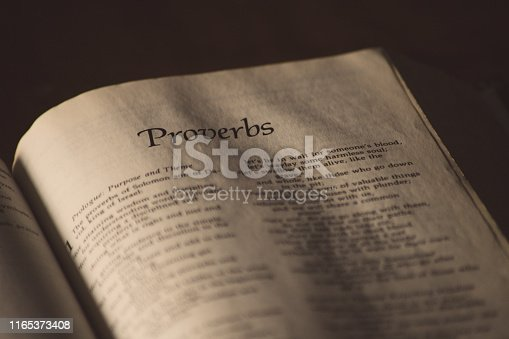 The first book of the book of proverbs