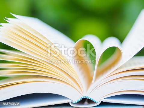 503130452istockphoto book on table in garden with top one opened and pages forming heart shape 665743328