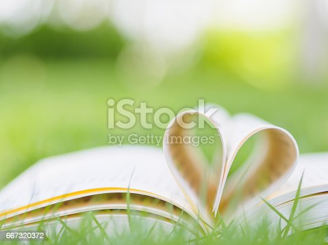 503130452istockphoto book on table in garden with top one opened and pages forming heart shape 667320372