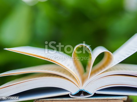 503130452istockphoto book on table in garden with top one opened and pages forming heart shape 667709554