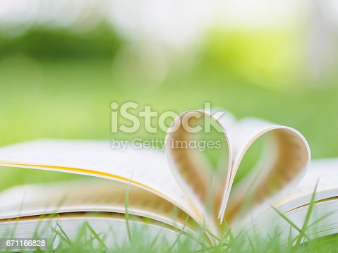 503130452istockphoto book on table in garden with top one opened and pages forming heart shape 671166828
