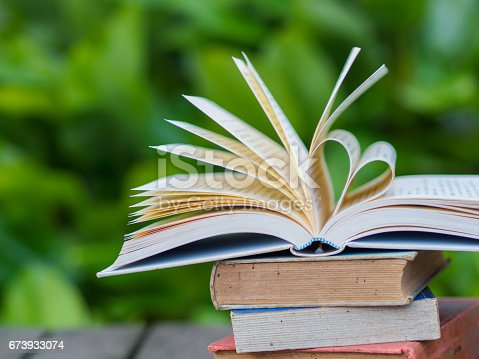 503130452istockphoto book on table in garden with top one opened and pages forming heart shape 673933074