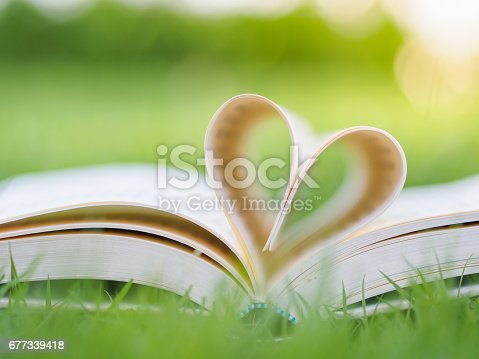 503130452istockphoto book on table in garden with top one opened and pages forming heart shape 677339418