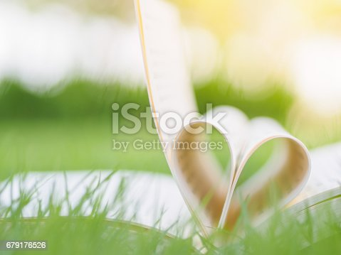 503130452istockphoto book on table in garden with top one opened and pages forming heart shape 679176526
