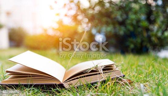 istock book 652195812