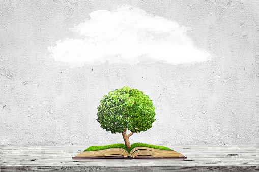 Open book with green grass field and tree on it on wooden table over concrete wall background. Concept image