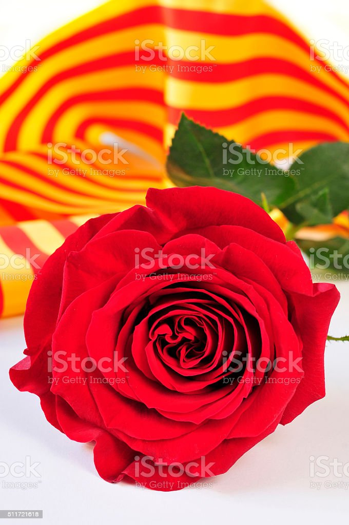 book, red rose and the catalan flag for Sant Jordi stock photo